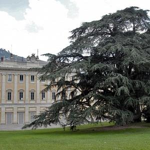 Villa Olmo Parco